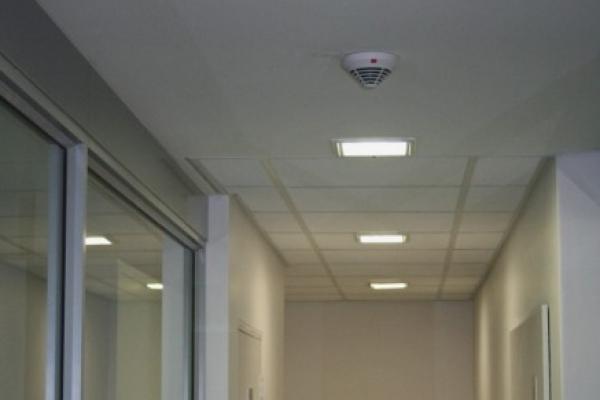 unique-lighting-vw-tavcor00209F77201-4401-7639-8DB6-77A67B216349.jpg